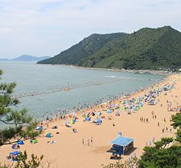 渋川海岸の写真